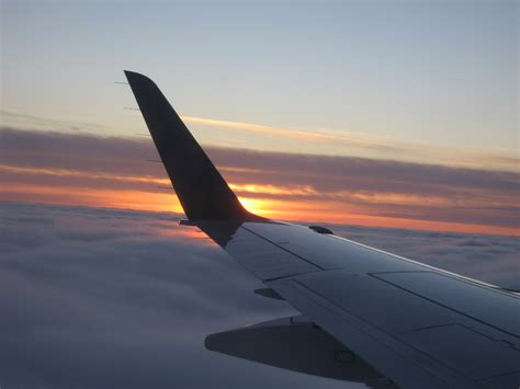Plane Wings file plane wing at sunset jpg