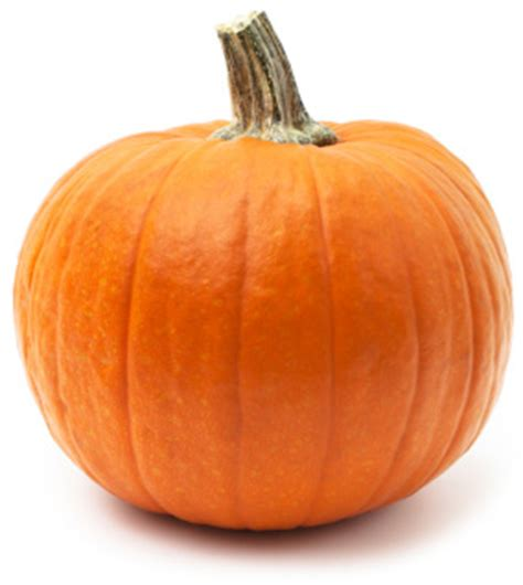 a pumpkin 3 pumpkin products to buy and 1 you can make