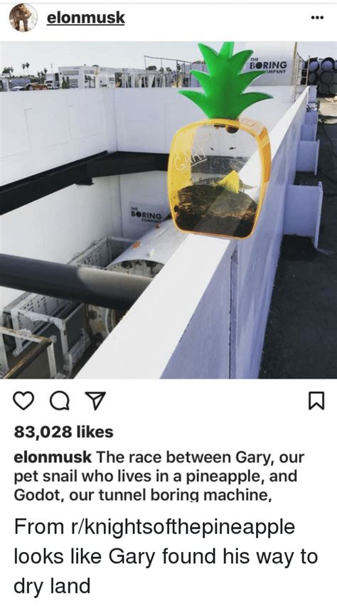 Gary The Snail Meme