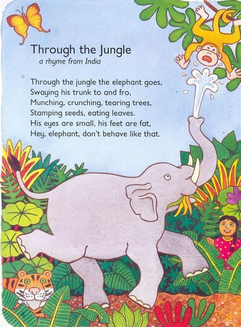 let s learn about jungle animals letã s learn about animals books 34 best topic rainforests images on classroom