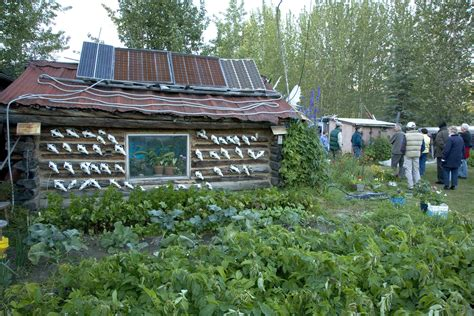 alaska cabin file reakoff cabin wiseman alaska jpg wikimedia commons
