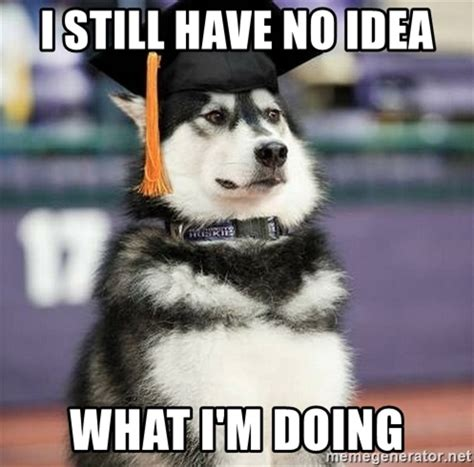 No Idea Meme - i still have no idea what i m doing graduation husky
