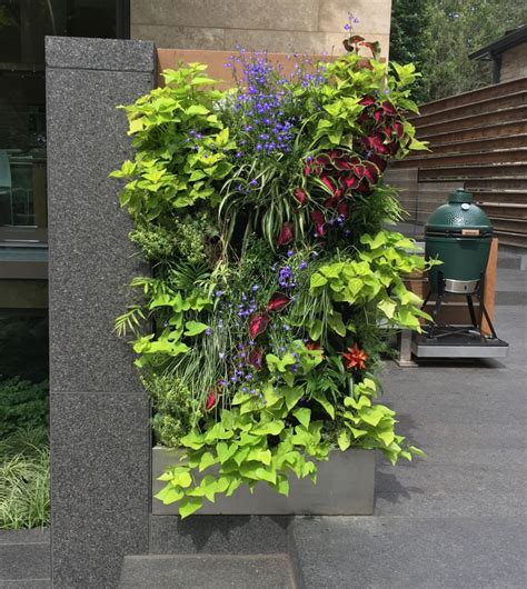 Vertical Garden Toronto Florafelt Florafelt Vertical Garden Systems
