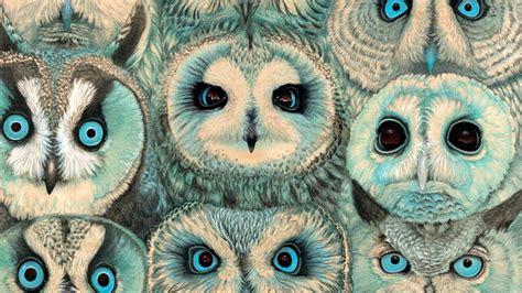 wallpaper tumblr owl pics for gt tumblr owl wallpaper