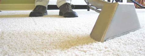 expert ease upholstery carpet cleaning mira mesa ca steam carpet cleaning