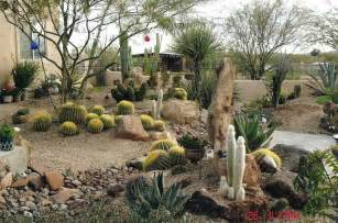 Backyard Desert Landscaping Ideas Some Unique Desert Landscaping Ideas Interior Design Inspiration