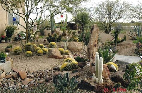 Desert Garden Ideas Some Unique Desert Landscaping Ideas Interior Design Inspiration