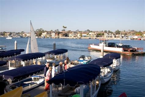 duffy boat rental redondo beach pontoon boats are the most fun picture of balboa boat