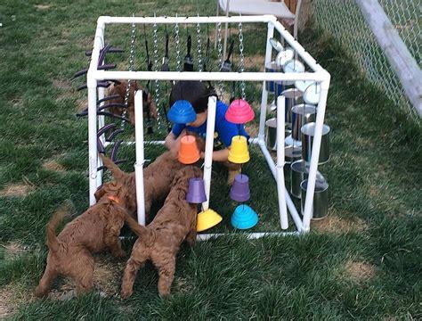puppy adventure box prairie doodles