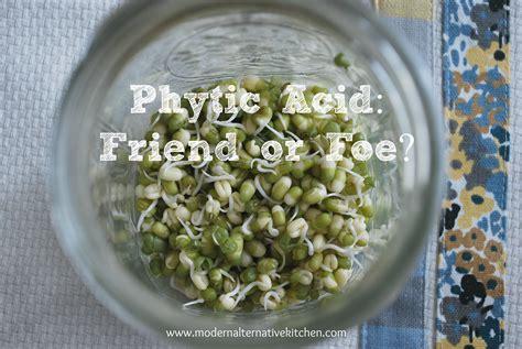 whole grains phytic acid phytic acid friend or foe modern alternative