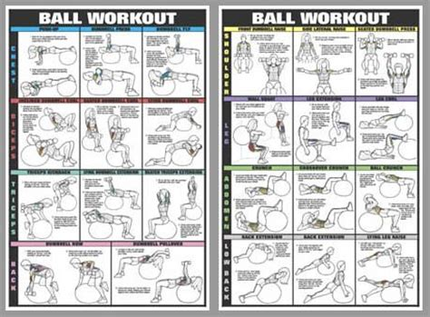 printable exercise ball workouts swiss ball workout wall charts two poster combo