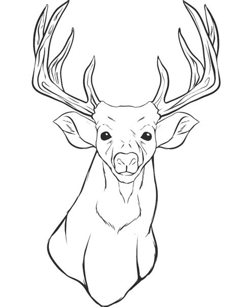 deer face coloring pages a deer head coloring for kids animal coloring pages