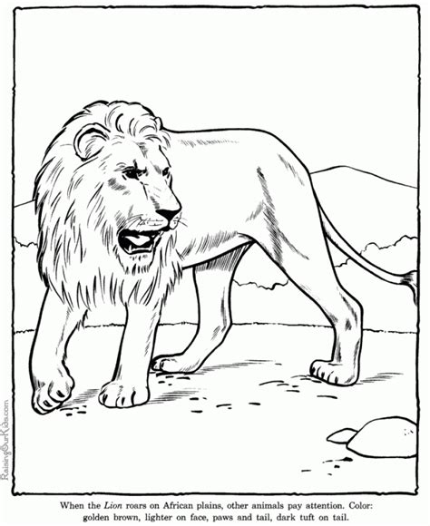 coloring pages x com 20 free printable lion coloring pages everfreecoloring com