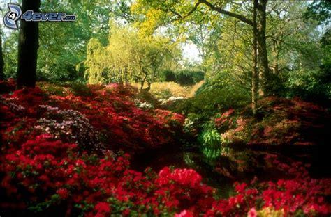 spring landscaping spring landscape