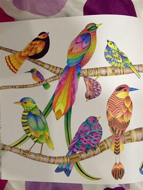libro millie marottas beautiful birds the world s catalog of ideas