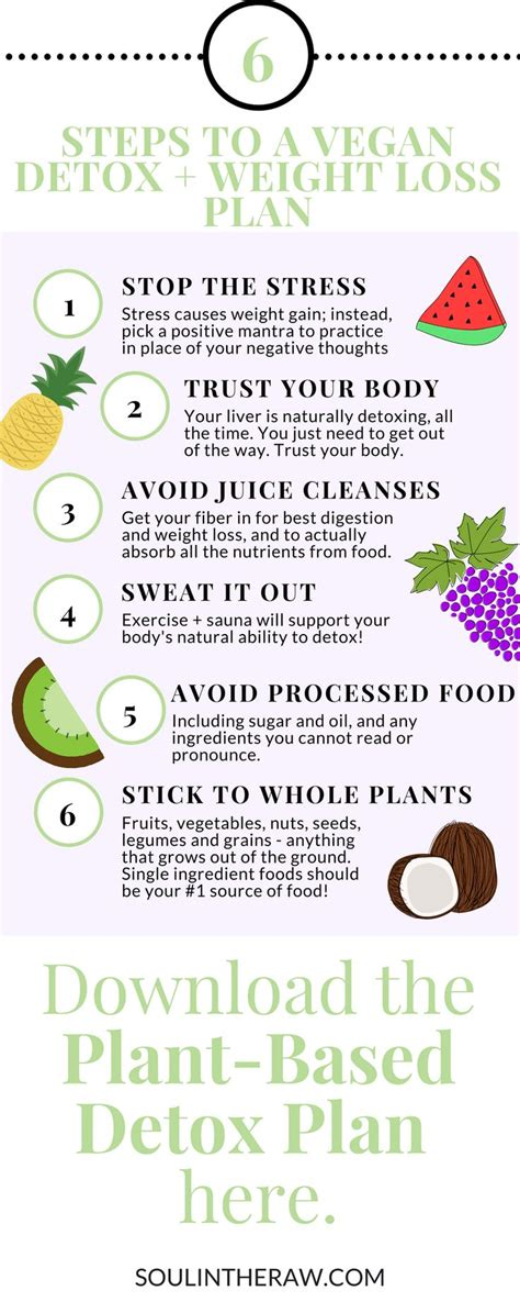 Detox Lesson Plan by 24 Best Soul In The Images On Clean