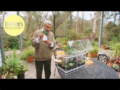 burkes backyard burke s backyard diy terrariums youtube
