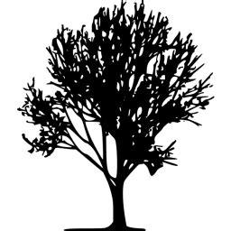 black tree  icon  black tree icons