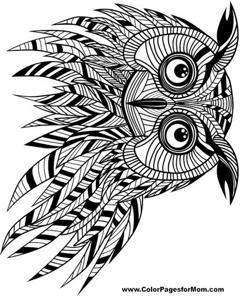 Colorpagesformom Com Owl Coloring Pages For Adults