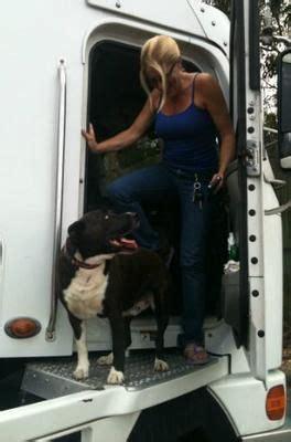 trucker pet karen   dog  australia trucking pets trucker buddies pinterest