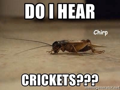 Crickets Chirping Meme - do i hear crickets crickets chirping meme generator