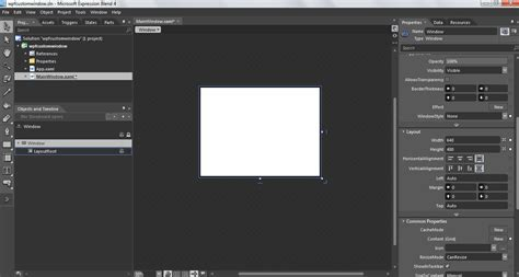 c layout null custom window in wpf