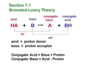 What Is Proton Donor Chapter 7 Acids And Bases Intermolecular Attractions