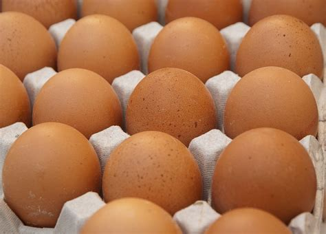 feed  hens   egg production