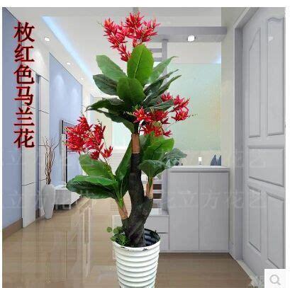 New Bunga Terbaru Bunga Artificial Flower Plastik Hias Anggrek Orchi 2 new high imitation plastic trees sitting room ground decorative plant bonsai tree of analog