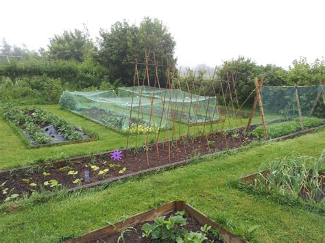 Vegetable Garden Structures Structures In The Vegetable Garden Greenside Upgreenside Up