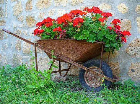 25 best ideas about wheelbarrow planter on