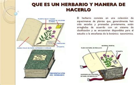 libro el herbario de las audio del color de la naturaleza el herbario radio rsd chimbote