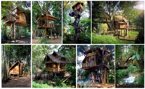 tree house resort the most incredible tree house hotel and eco tourism tree resorts all around the world
