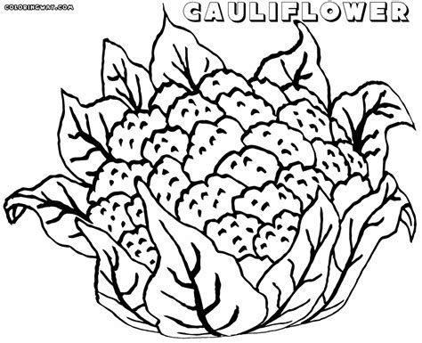 coloring page of on cauliflower coloring pages coloring pages to