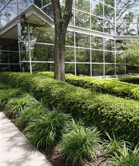 louisville ky landscaper comparison care inc vs