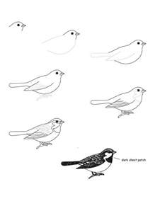 How To Draw Bird Bird That Looks Easy To Do Drawing How To S