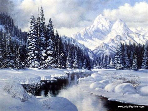 winter creek curve snow trees water reflections mysterious mist of nature 1000 ideas about winter landscape on snow winter and finland