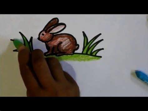 tutorial menggambar katak 47 best images about cara menggambar untuk anak anak on