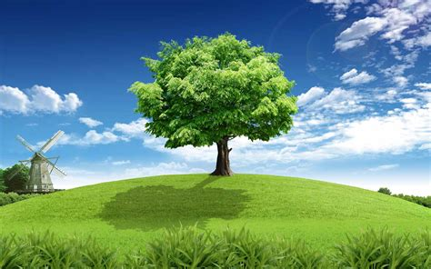 wallpaper green tree tree grass windmill sky clouds wallpapers tree grass