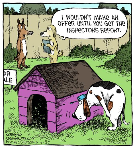 home inspections revealed the basics that every buyer