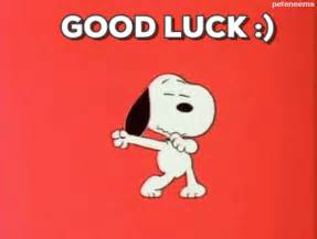 snoopy good luck wishes funny quotes snoopy funny quotes humor