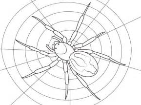 Lace Webbed Spider Coloring Page  Free Printable Pages sketch template