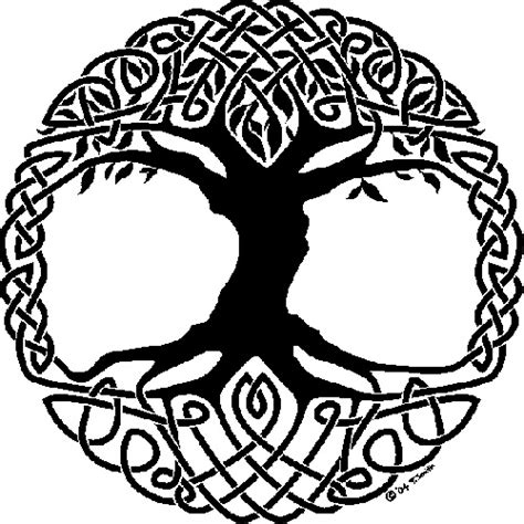 symbolism of a tree the celtic tree of life history meaning symbolism