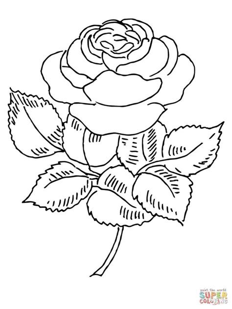 coloring pages more images roses 12 a cute halloween cat1 coloring page cute fox with roses