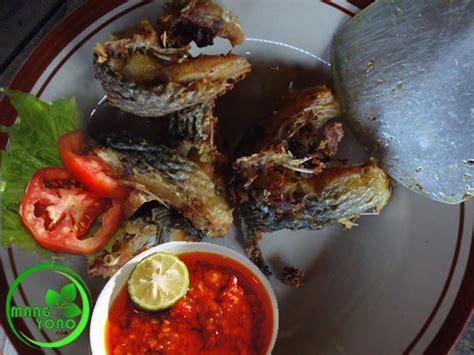 ikan mas goreng sambal tomat  ikan mas bakar bumbu