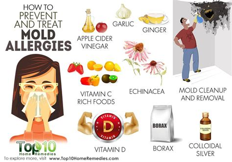 how to treat allergies how to prevent and treat mold allergies top 10 home remedies