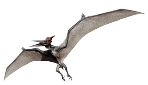 Imagenes Png Jurassic World | image pteranodon jurassic world png dinopedia fandom