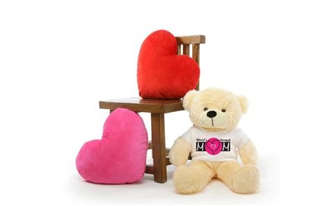 whatsapp wallpaper teddy advance teddy day whatsapp dp wallpapers images pictures