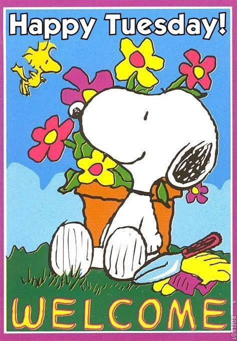 imagenes de good morning tuesday snoopy happy tuesday quotes quotesgram