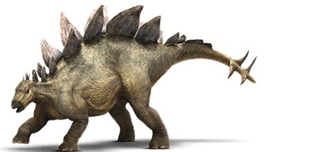 fighting for their mate interstellar bridesâ volume 12 books stegosaurus vs triceratops spacebattles forums
